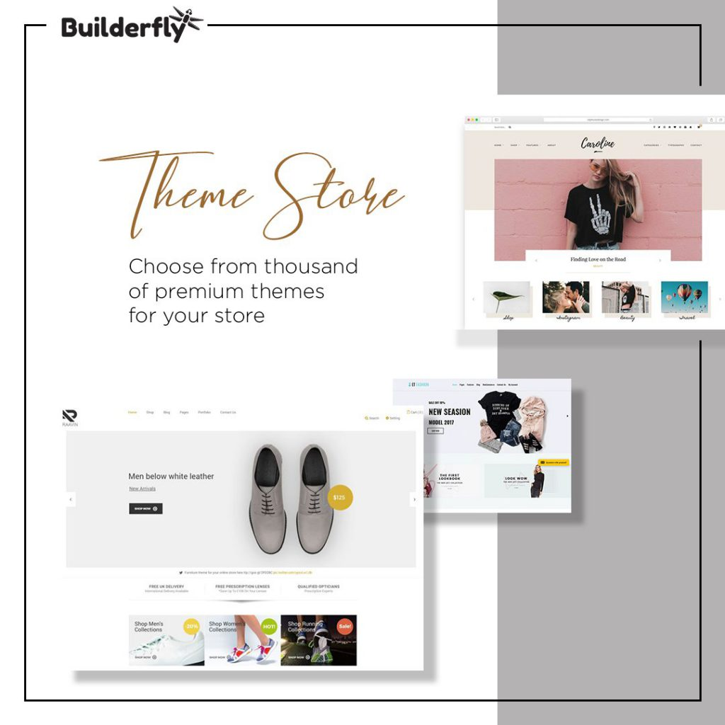 Builderfly Theme store, Theme store