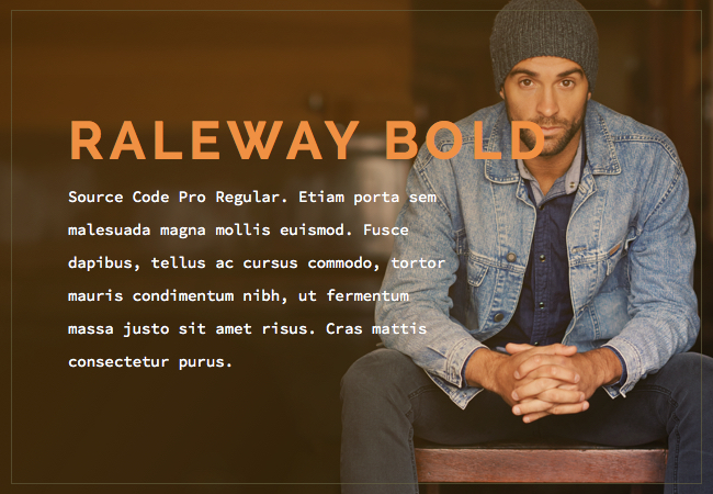 Raleway Bold and Source Code Pro Regular