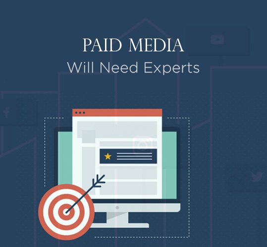 Paid Media Will Need Experts - Online Shopping Trends Reveal