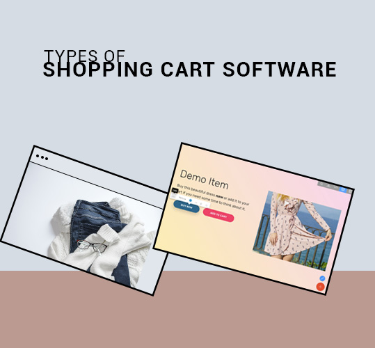 Types of Shopping Cart Software