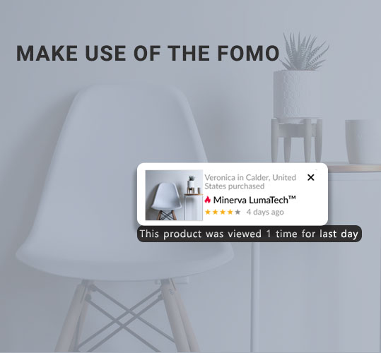 Make use of the FOMO to target home decor customers